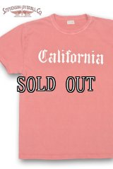 STEVENSON OVERALL CO./Graphic T-shirt California